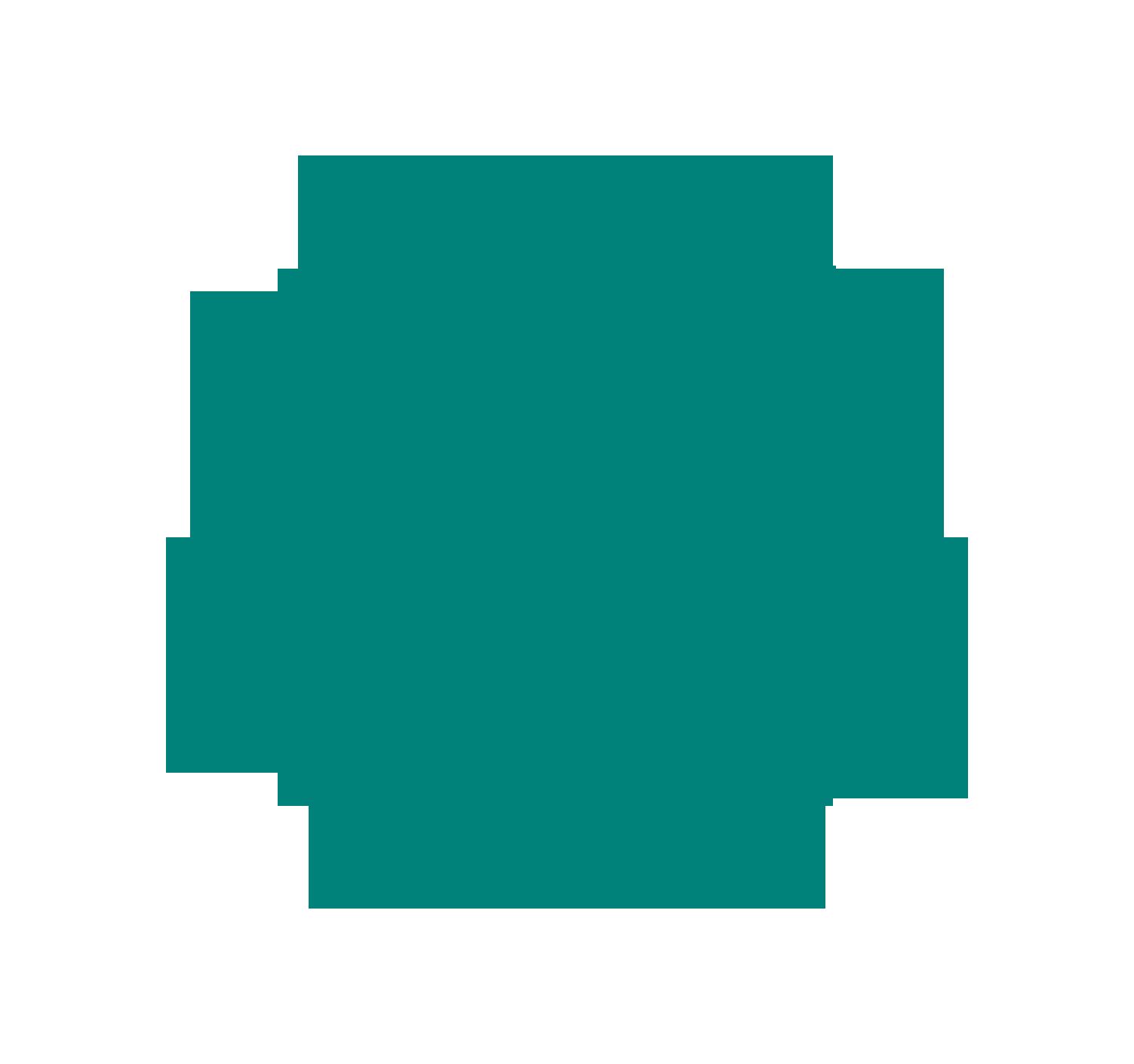 logo de Gestion récréotouristique du Mont Lac-Vert